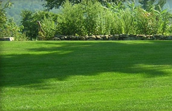best-park-city-lawn-maintenance-high-country-lawncare