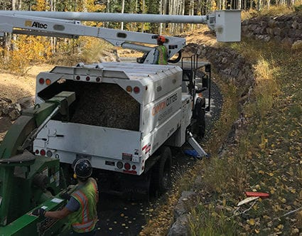 canyon-cutters-chipper-tree-trimming