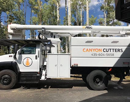 canyon-cutters-tree-trimming-truck