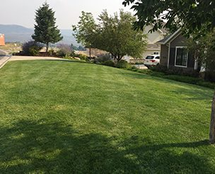 lawncare-sprinklers-park-city-SJ-lawn-maintenance