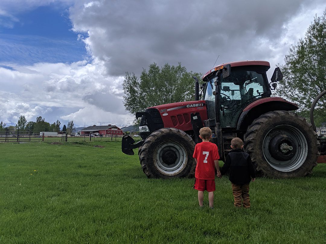 heber-valley-cheese-artisans-touch-a-tractor-event