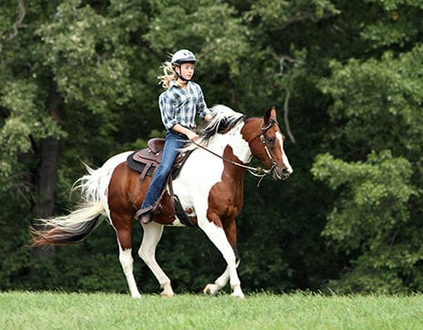 Rhodes-Valley-Outfitters-Park-City-Activities-riding-stables