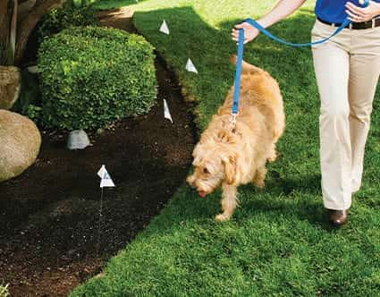 dog-fence-park-city-invisible-fence-for-pets
