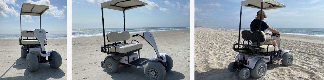 beach-buggeez-cricket-custom-golf-cart