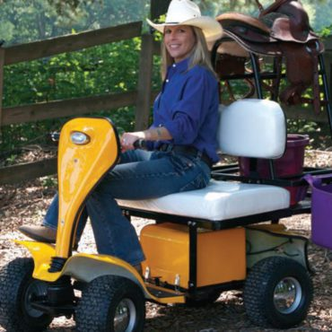 ESV Cricket Golf Cart Owner