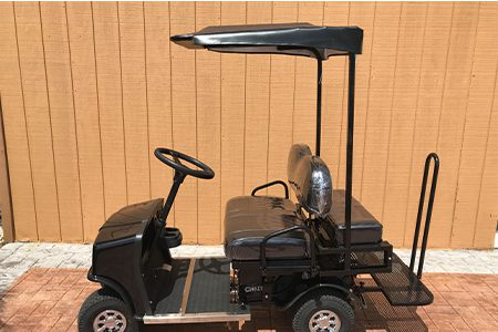 SX-3-standard-cricket-golf-cart
