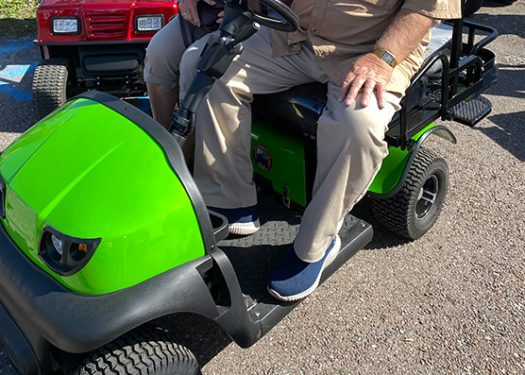 sonic-green-cricket-golf-cart-rx5