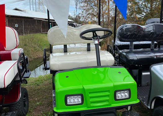 sonic-green-cricket-mini-cart-sx3